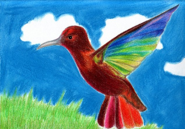 Magical Colibri Colibri